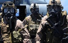 Mỹ triển khai lực lượng đặc nhiệm tới Iraq chống IS