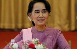 Bầu cử tại Myanmar: Đảng nào chiếm lợi thế?