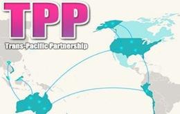 Khai mạc Hội nghị Bộ trưởng Kinh tế TPP