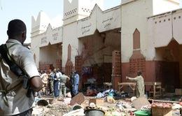 Đánh bom tự sát tại Cộng hòa Chad, 14 người thiệt mạng