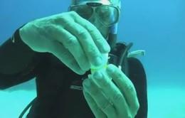 Điều gì xảy ra khi đập trứng dưới đáy biển?