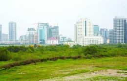 3 tháng, hơn 4.300 ha đất có dấu hiệu vi phạm
