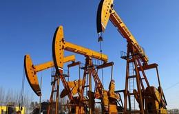 Giá dầu thế giới đi lên sau báo cáo của Bộ Năng lượng Mỹ