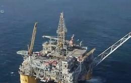 Dầu tăng giá trước cuộc họp quan trọng của OPEC