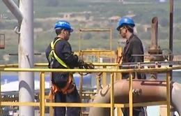 OPEC chia rẽ về quyết định giữ nguyên sản lượng khai thác dầu