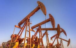 Giá dầu đi lên trong khi chờ quyết định tăng lãi suất của FED