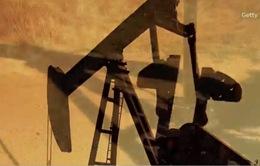 Giá dầu thô Brent giảm xuống mức thấp nhất trong 11 năm