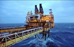 Giá dầu thô thế giới tăng mạnh trở lại