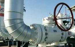 Phát hiện mỏ khí đốt tự nhiên lớn nhất Địa Trung Hải