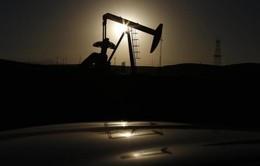 Mỹ soán ngôi Saudi Arabia nhờ cuộc cách mạng dầu khí đá phiến