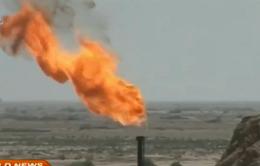 OPEC hạ dự báo nhu cầu tiêu thụ dầu mỏ thế giới