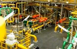 Brazil thận trọng với dự báo trữ lượng dầu khí khổng lồ trong nước