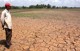 Đồng bằng sông Cửu Long thiếu nước do biến đổi khí hậu