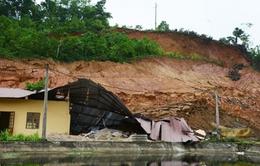 Yên Bái: Lở đất nghiêm trọng, nửa quả đồi trôi sạt