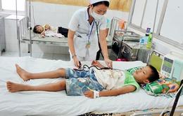 Gia tăng ca mắc bệnh sốt xuất huyết và tay chân miệng
