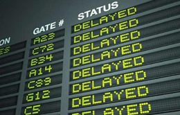 Hà Lan hủy khoảng 80 chuyến bay do bão lớn
