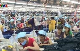Tiếp cận thị trường toàn cầu: DN Việt Nam còn nhiều hạn chế