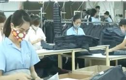 Kim ngạch xuất khẩu dệt may tăng hơn 10%