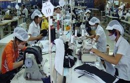 Nhiều thương hiệu dệt may nhà nước 'lột xác' để hội nhập