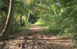 Phong Điền, Cần Thơ: 40 năm người dân chật vật với con đường xuống cấp
