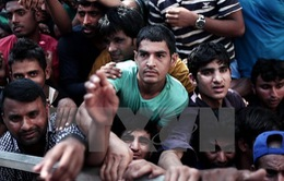 Nhiều người di cư thiệt mạng trên biển Địa Trung Hải