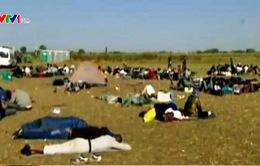 Châu Âu - Điểm đến gian khổ của người di cư