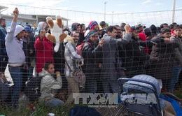 Israel xây dựng tường rào biên giới ngăn người di cư