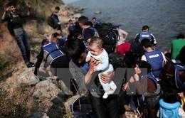 Khủng hoảng di cư: Chủ đề chính tại Hội nghị Thượng đỉnh EU
