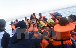 EU hỗ trợ 48 triệu Euro cho các quốc gia tiếp nhận người di cư