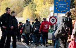 Đức đẩy nhanh giải quyết khủng hoảng di cư