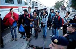 Vấn đề tị nạn - Trọng tâm của Hội nghị Thượng đỉnh EU