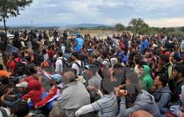 Chính phủ Đức thông qua gói giải pháp mới về người tị nạn