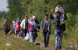 EU tìm giải pháp cho cuộc khủng hoảng di cư