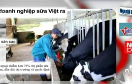 Điểm báo 21/10: Sau TPP, ngành sữa Việt sẽ ra sao?