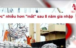 """Điểm báo 21/9: Việt Nam gia nhập WTO, """"được"""" nhiều hơn """"mất"""""""