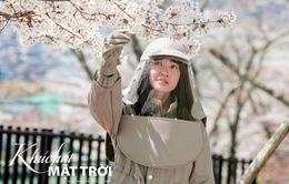 'Khúc hát mặt trời' chính thức lên sóng 'giờ vàng' trên VTV3