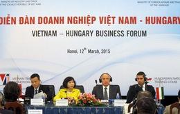 Diễn đàn doanh nghiệp Việt Nam - Hungary