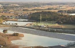 Nhật Bản: Gia tăng nhà máy phát điện bằng năng lượng mặt trời