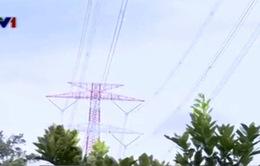 Quảng Ninh: Nhiều hộ dân sống dưới đường điện cao thế