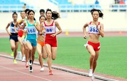 Điền kinh cự ly trung bình: Mỏ vàng của thể thao Việt Nam