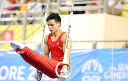 VĐV thể dục dụng cụ Đinh Phương Thành thu hút truyền thông và khán giả