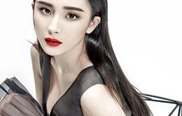 Cận cảnh gương mặt đẹp hoàn hảo của Dương Mịch