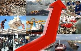 Doanh nghiệp nội - Nền tảng chính của nền kinh tế?