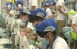 Doanh nghiệp đánh giá tích cực sau khi Việt Nam ký kết TPP