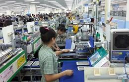 93% doanh nghiệp Việt tin tưởng vào TPP