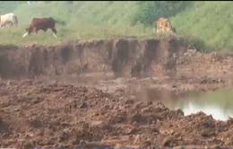 Nhiều ao, hồ ở Hà Nội trở thành bãi tập kết phế thải xây dựng