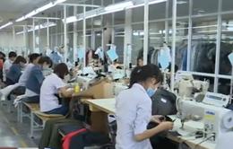 Dệt may Việt Nam tìm cách phát triển thương hiệu riêng
