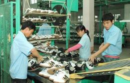 Doanh nghiệp da giày ngoại đổ bộ vào Việt Nam nhờ TPP