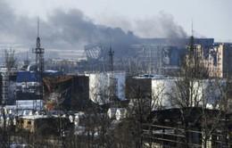 Giao tranh tại miền Đông Ukraine: Thương vong lớn cho cả hai phía