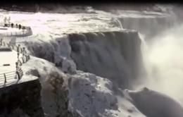 Lạnh kỷ lục tại Bắc Mỹ khiến thác nước Niagara đóng băng